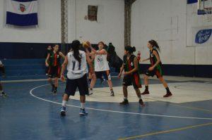 damas ferro basquet 1