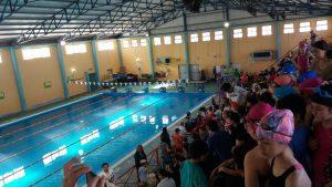natacion-ninos-sao-2